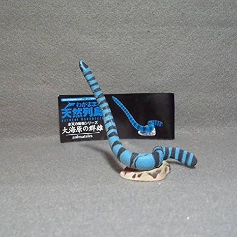 ウミヘビ エラブ 【ウミヘビエキス】 栄養成分と効果/海蛇の種類・生態