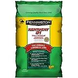 Pennington Kentucky 31 Tall Fescue Penkoted Powder Coated 25 Lb