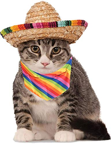 (Cute Sombrero Hat with Colorful Scarf, Mini Straw Sombrero Hats Mexican Hats for Small Pets/Puppy/Cat (One))