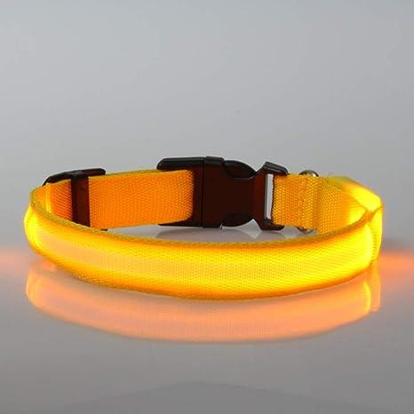 MYYXGS Super Brillante USB BateríA A Prueba De Agua Perro Led ...
