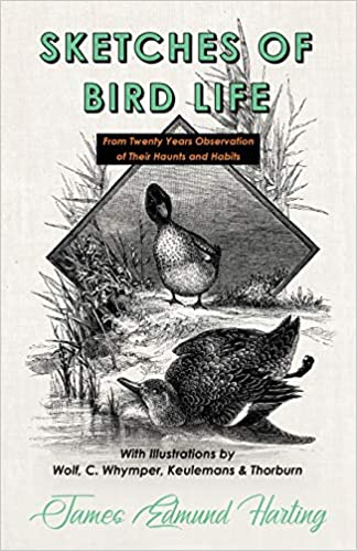 Buy Sketches of Bird Life - From Twenty Years Observation of Their
