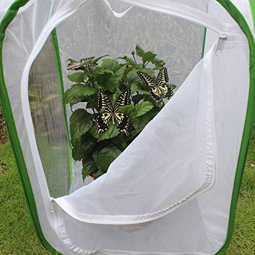 40x40x60cm Jaulas Plegables para la cría de Insectos Jaula para el ...