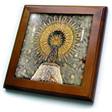 3dRose ft_219727_1 The Lady of The Basilic of El Pilar Our Lady of The Pillar (Virgin Mary) - Framed Tile, 8 by 8""