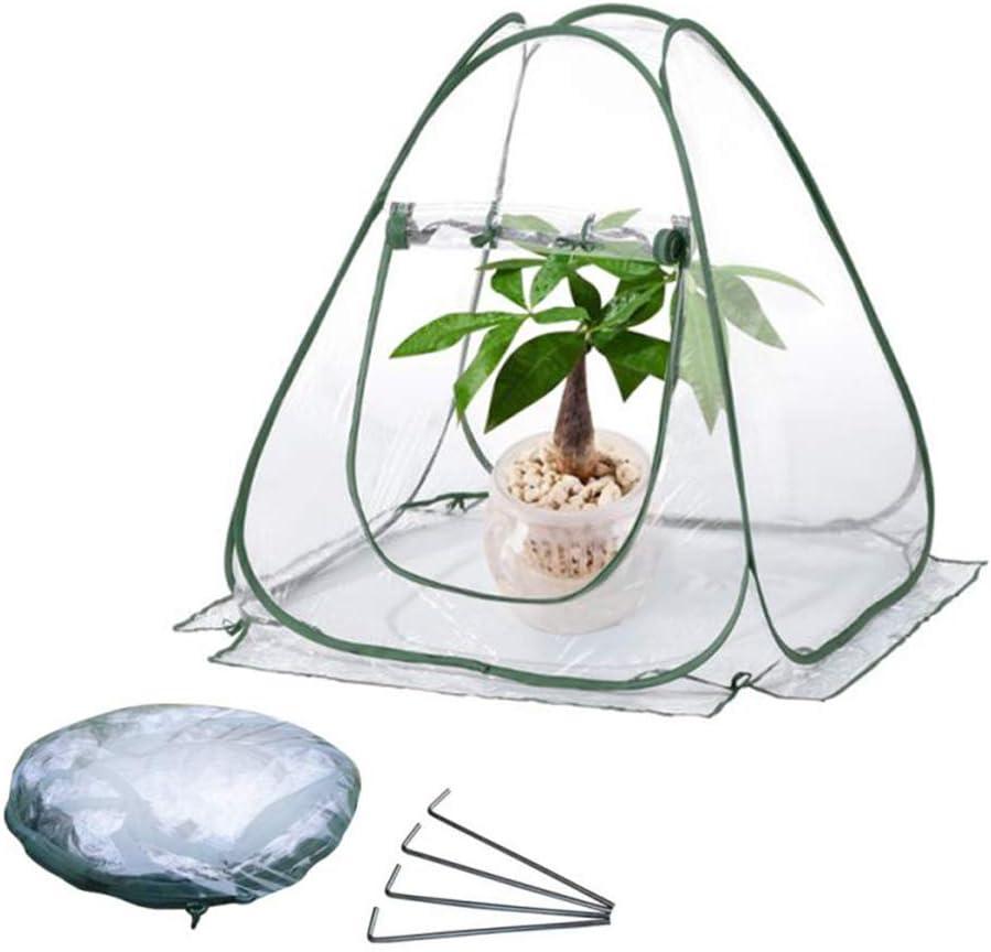 SAMTITY Mini Greenhouse Pop up Grow House Small Portable Plant Cover Garden Flower Shelter for Garden Outdoor Backyard PVC Indoor Outdoor Backyard Greenhouse Cover