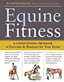 Equine Fitness: A Program of Exercises and Routines