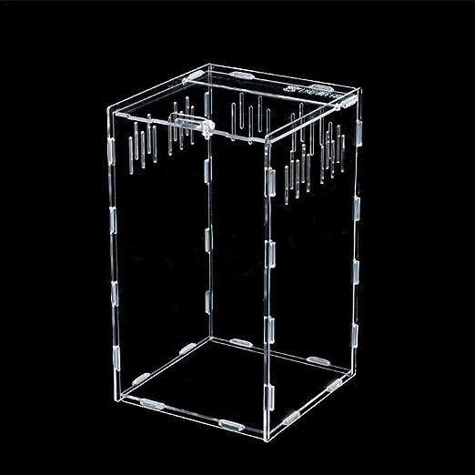 Rainai Caja de alimentación acrílica magnética Transparente – Caja ...