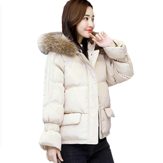 Abrigos Algodón Chaqueta de plumón Pan algodón de Hong Kong Ropa de algodón de Invierno Moda Verde y Blanca Corto de algodón: Amazon.es: Ropa y accesorios