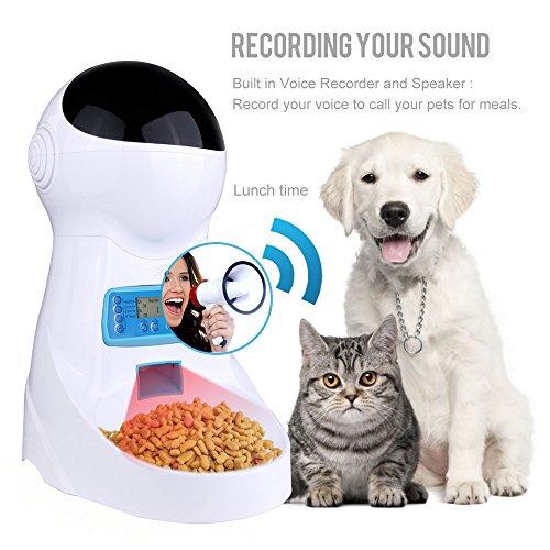 automatic cat feeder 3l pet food dispenser feeder for medium and