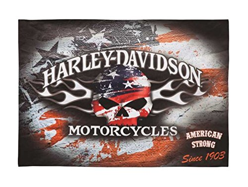 (Harley-Davidson Flaming Skull Americana Estate Flag)