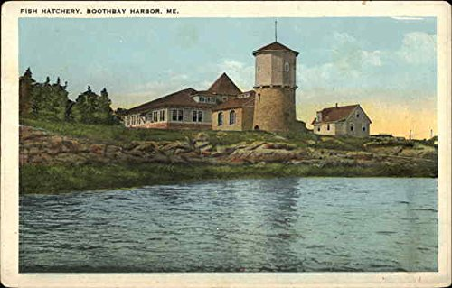 Water View of Fish Hatchery Boothbay Harbor, Maine Original Vintage Postcard