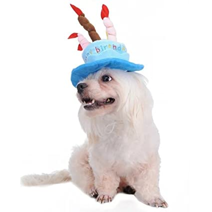 Amazon Tinksky Cat Dog Pet Happy Birthday Party Hat With Cake And 5 Colorful Candles Design Cosplay Costume Accessory Headwear Blue Supplies