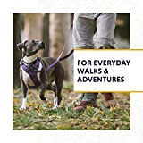 RUFFWEAR, Front Range Dog Leash, 5 ft Lead with