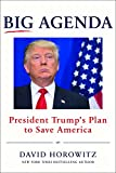 Big Agenda: President Trump's Plan to Save America (Hardcover) ~... Cover Art