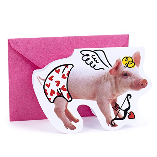 Hallmark Shoebox Valentine's Day Greeting Card (Cupid Pig)