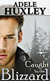 Free eBook - Caught by the Blizzard