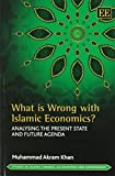 What Is Wrong With Islamic Economics?: Analysing the Present State and Future Agenda (Studies in Islamic Finance, Accounting and Governance series)