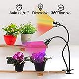 LED Grow Light for Indoor Plants,Full Spectrum Dual Head Desk Clip Plant Light for Seedling Blooming,Adjustable Gooseneck & Timer Setting 3H/9H/12H,3 Color Modes