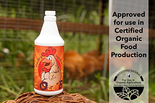 significant Ole Bird Poultry Probiotic being Supplies