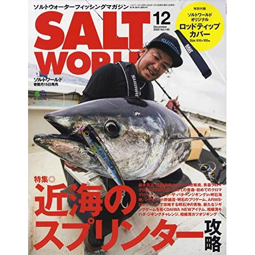 SALT WORLD 2020年12月号 画像