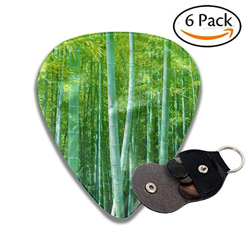 - Beautiful Bamboo Forest Soft Green Bamboo Forest With Young Bamboos Stylish Celluloid Guitar Picks Plectrums For Guitar Bass .6 Pack 71mm
