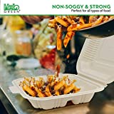 HeloGreen [100 Count] Eco Friendly Take Out Food