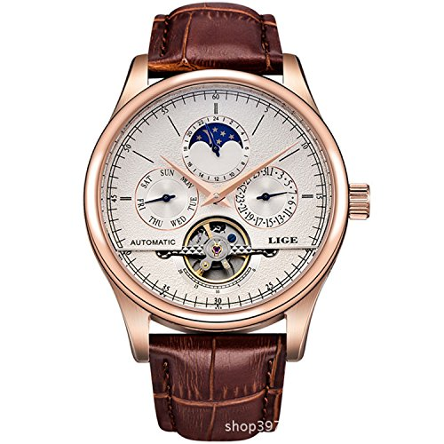 (Watch Luxury Men's Multifunction Automatic Self-Wind Watch with Brown Leather Band Skeleton Watch (Rose Gold)