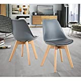 NOBPEINT Eames-Style Mid Century Dining Chairs,Set of 2(Gray)