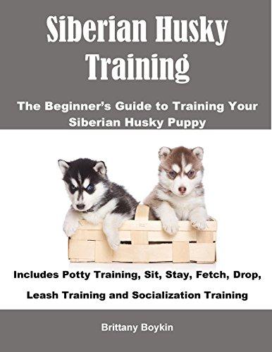 Husky Puppy (Siberian Husky Training: The Beginner's Guide to Training Your Siberian Husky Puppy: Includes Potty Training, Sit, Stay, Fetch, Drop, Leash Training and Socialization Training)