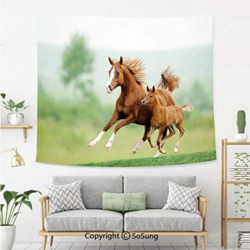 (Horse Decor Wall Tapestry,Running Chestnut Horses Mare and Foal Meadow Scenic Summer Day Outdoors,Bedroom Living Room Dorm Wall Hanging,60X50 Inches,Light Brown Green)