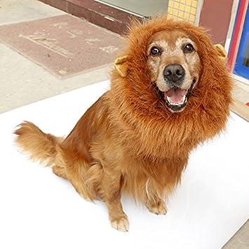 bailuoni disfraz de león melena y gran perro león Mane peluca – gran perro disfraces con