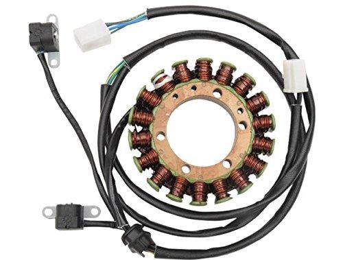 Ricks Motorsport Electric Stator 21337