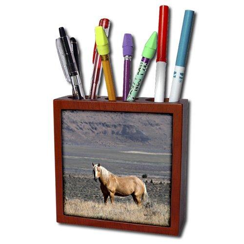 Danita Delimont - Horses - USA, Oregon, Harney County, Steens Mountain. A single wild horse. - 5 inch tile pen holder (ph_208738_1)