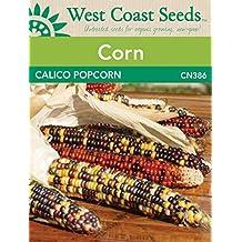 Corn Seeds - Calico Popcorn