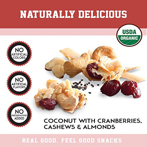 Creative Snacks Naturally Delicious Organic Coconut Snacks with Cranberries and Nuts, 2 Pack, 12 Ounce Resealable Bags by Creative Snacks (Image #4)