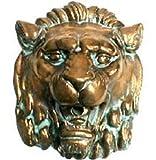 Pentair 5820804 WallSpring Brass Roman Lion Decorative Accent