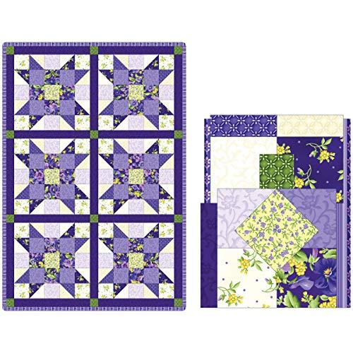 - Maywood Studio Quilt Kit Pod Emma's Garden Sister's Choice 6 Block Fabric, Multi-color