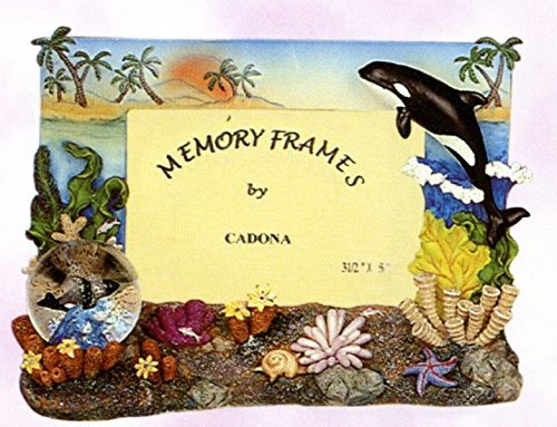 Decorative Orca Whale Picture Frame with Mini Water Globe, 6