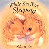 While You Were Sleeping by Professor John Butler (2001-09-01)