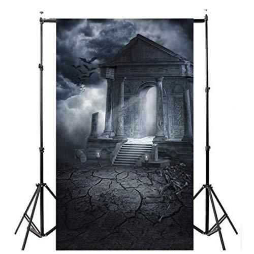 Dacawin Halloween Pumpkin Photography Backdrops, Lantern Photo Backgrounds Wrinkle Free Seamless Cotton Cloth(3x5FT) (D) ()