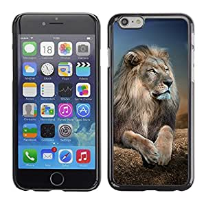 All Phone Most Case / Hard PC Metal piece Shell Slim Cover Protective Case for Apple Iphone 6 Lion Royal Night Nature Africa Savannah Animal