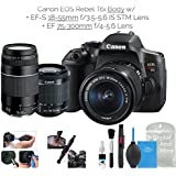 Canon EOS Rebel T6i Digital SLR Camera (Wifi Enabled) Double Zoom Kit w/EF-S 18-55mm f/3.5-5.6 IS STM Lens + EF 75-300mm f/4-5.6 + DigitalAndMore Deluxe Camera Cleaning Solution