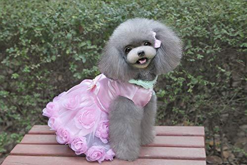 Primavera Red Dimensioni Abito Pet Cappotto colore Dimensione colore Nuovi E Gonna Misc Supplies Abiti Teddy Red Xl L'estate Rosa Cani Rose Vestiti Xxl Per qIxw7Tqda