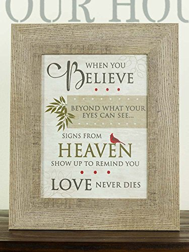 Believe Framed - NEW When You Believe Beyond Miracles Heaven Sympathy Red Cardinal Religious Framed Art Decor 13x16