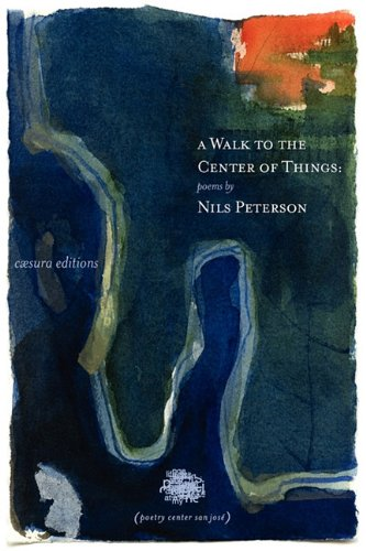 Read Online A Walk to the Center of Things pdf