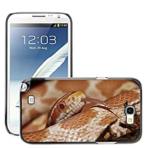 Hot Style Cell Phone PC Hard Case Cover // M00130359 Corn Snake // Samsung Galaxy Note 2 II N7100