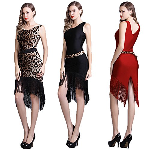[YC WELL Latin Dance Dress Tassel Women Salsa Rumba Cha Cha Samba Tango Dance Performance Clothes Competition Costumes Party] (Chacha Dance Costume)