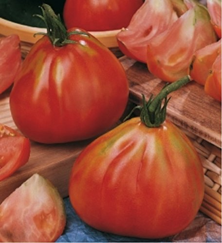 Tomato 'Red Pear Piriform' (Lycopersicon Esculentum Mill.) Indeterminate Italian Heirloom Seeds, ()