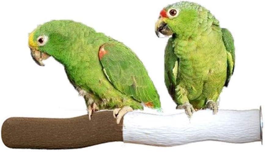 Uteruik - Soporte para perca de calcio natural para mascotas, loros, periquitos, cacatúas, conura, pinzón, canario, cacatúa, cacatúa, gris africano, jaulas de Amazonas, 1 unidad