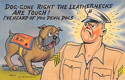 Military Comic Postcard, Old Vintage Antique Post Card Leathernecks, Mascot, Marine Comics Unused