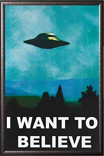 FRAMED I Want to Believe 24x36 Poster in Real Wood Premium S